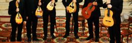 mandolin-violin