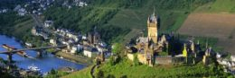 mosel riesling wine
